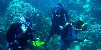 Taranto. Nel Mar Piccolo trovato ordigno bellico con 16 kg di tritolo attivo