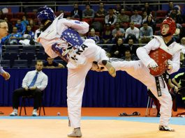 Palagiano. Alle internazionali di Taekwondo arrivano delle medaglie