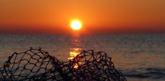 Taranto. D'Amato M5S: i lavoratori del settore della pesca vanno tutelati