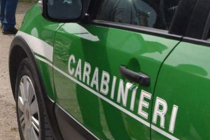 Depuratore di caseificio sequestrato in agro di Martina Franca