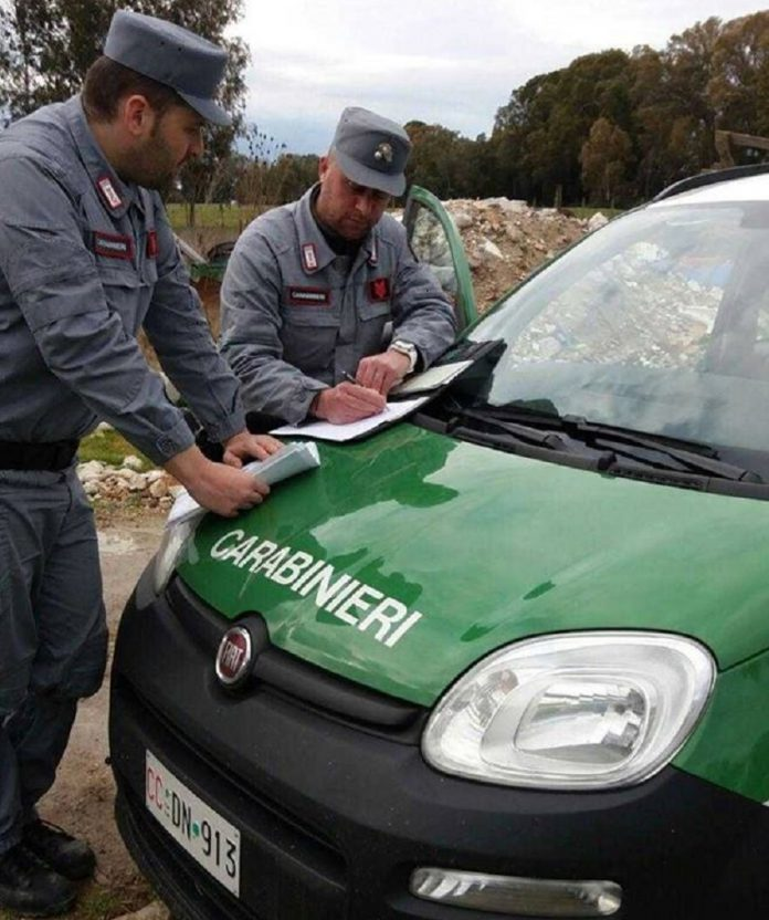 Carabinieri Forestali salvano a Crispiano dei raccoglitori di funghi avvelenati