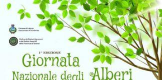 Giornata nazionale dell'albero fino all'11 dicembre a Laterza