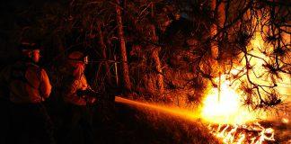 Nasce a Ginosa il primo catasto incendi per contrastare gli speculatori