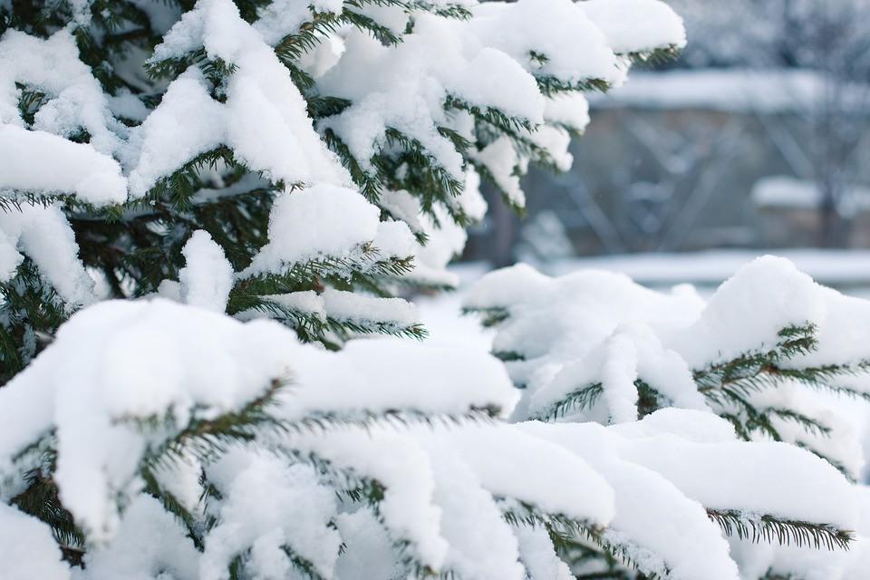 Natale sotto la neve fino a Capodanno a Montemesola secondo il meteo