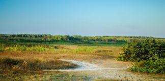 Riserve naturali di Manduria e di tutta la Puglia da visitare on line con un progetto