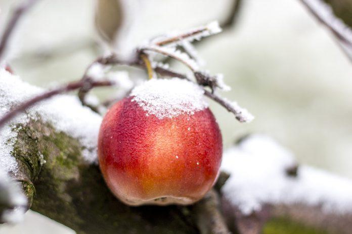 Disagi a Castellaneta per la neve e il freddo