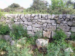 Arte dei muri a secco. Un Corso a Maruggio
