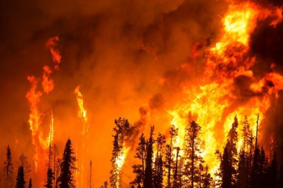 Misure di prevenzione incendi sindaco di Laterza