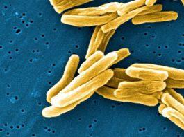 Malattie infettive al centro di un simposio a Manduria