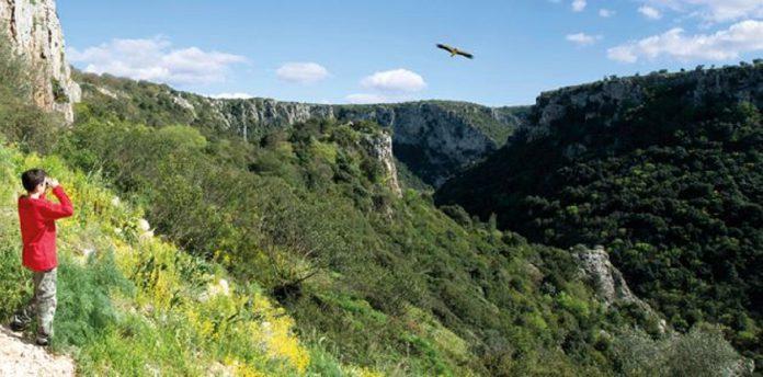 Escursione all'Oasi della Lipu nella Gravina di Laterza