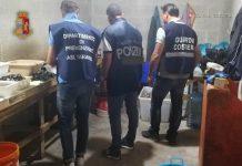 Sequestrati 3 quintali di cozze a Taranto