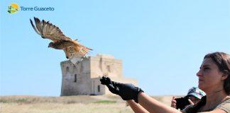 60 esemplari di animali liberati a Torre Guaceto