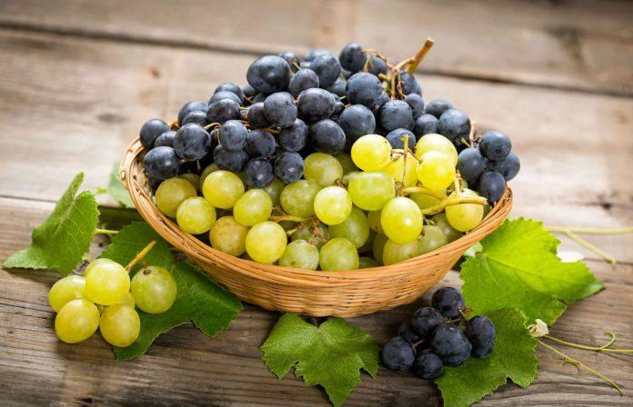 Taranto, uva