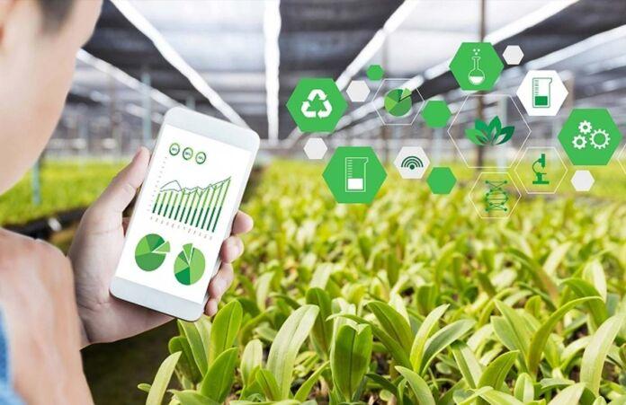 Agricoltura: un questionario online per capire le esigenze degli agricoltori