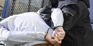 Sono due le persone arrestate e 5 i denunciati nell'ambito di un operazione d'inchiesta contro i furti nelle scuole in Puglia e Basilicata.