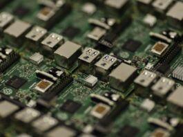microchip day