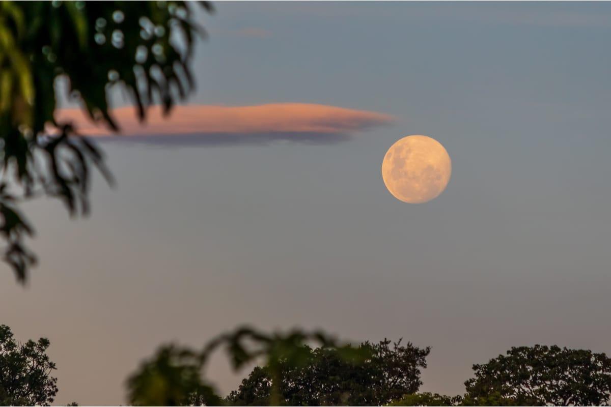 Una nuova super Luna, l'ultima del 2020, si è vista stanotte!