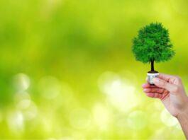 progetto green Taranto