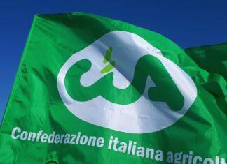 CIA Puglia
