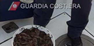 sequestrate 80 kg cetrioli di mare Oloturie Mar Grande Guardia Costiera Taranto