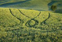 CIA Agricoltori Puglia
