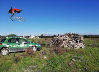 Castellaneta: cumulo di rifiuti incendiati in campagna. Denunciato 62enne.