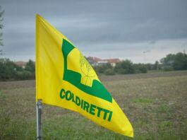 Maltempo in Puglia. Coldiretti, gravi danni agli agricoltori