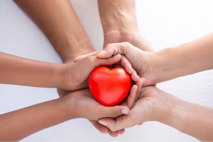 donazione multiorgano andria
