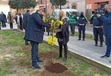 Taranto, Melucci pianta un albero di mimosa a Talsano
