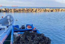 Guardia costiera di Taranto
