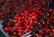 Prezzo delle ciliegie
