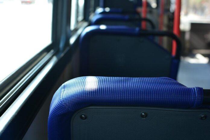 immatricolazioni bus