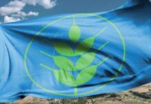 Castellaneta - bandiera Spighe Verdi