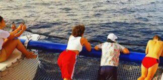apleti delfini