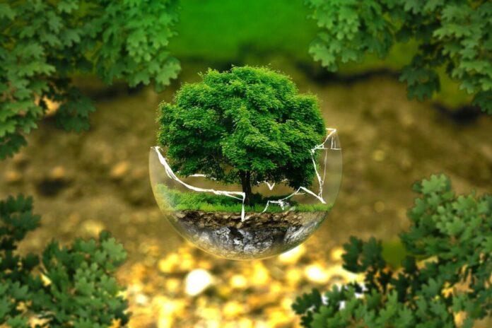 puglia green hydrogen valley