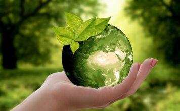 summer school sostenibilità