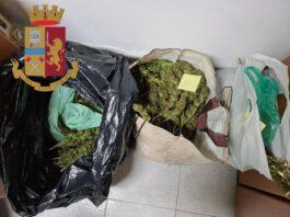 Grottaglie - tre denunciati per furto di canapa industriale